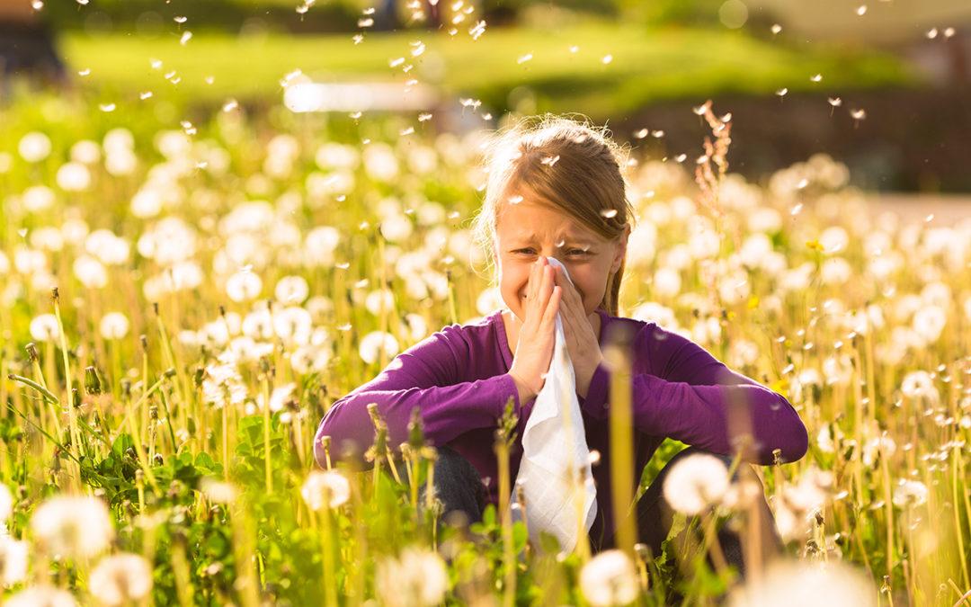 Ektoina – naturalny i niezwykle ciekawy sposób na alergię!