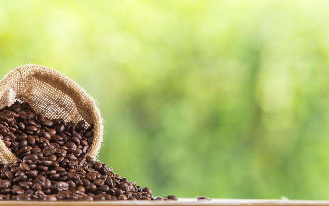 Zielona kawa i jej właściwości prozdrowotne i odchudzające